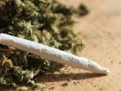 2/7/14 – Should Marijuana & Other Drugs Be Legalized?