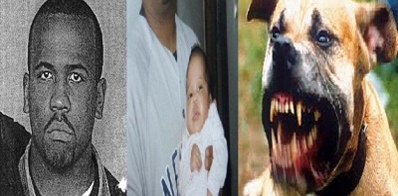 Brooklyn Dad Murders Baby Then Feeds The Remains To The Family Dog! (Video)