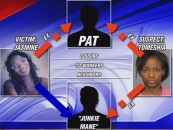 Black Woman Stabs & Kills Her Own Cousin Over A S.I.M.P.! BT-1000 Terminated By Upgraded Model! (Video)