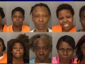 10 Beautiful Black Queens Arrested For Prostituting In Front Of Schools & Churches In Memphis TN! (Video)