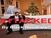 Rapper Ludacris & His New Wife Attacked By Black Hoodrats Over Child Custody Decision! (Video)