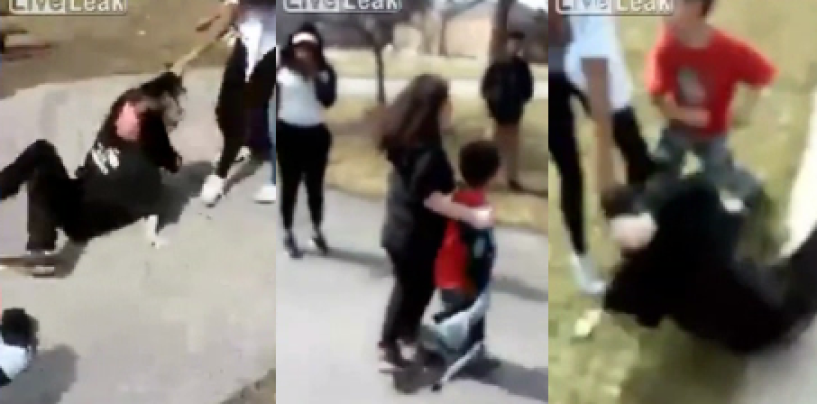 Black Teen Beast Attacks White Girl & Little Brother Viciously While Other Nigglets Cheer It On! (Video)