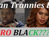Can A Transsexual Be Pro Black As Well? Tommy Sotomayor Says Hell NO & Here's Why! (Video)