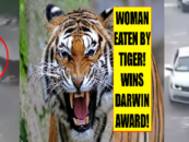 Women Get Mauled  Killed By Tiger While Trying To Assault Husband At Zoo! (Video)