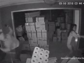 Female Asian Assassin Terminates 1 ED-209 & Sends 2 Others Scurrying During Home Invasion! (Video)