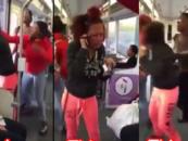 UgMo Jealous BT-1100 Dark-Skin Chicks Assault Beautiful Half-Breed On Bus & No One Helped! (Video)