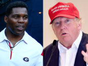 College Hall Of Famer Herschel Walker Harassed By Blacks For Supporting Donald Trump!