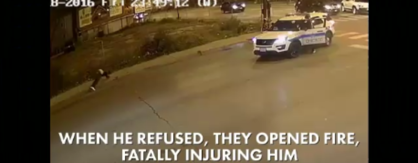 Chicago PD Shoot & Kill Black Thug Who Pulls Out Gun During A Street Fight! #NigglyBearSeason (Video)