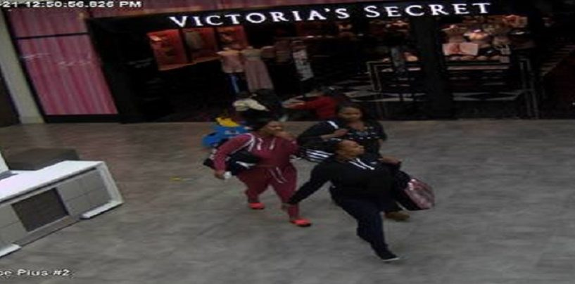 Black Women Steal Over 17k Worth of Bras From Victoria Secrets & You Wonder Why They Get Profiled? (Video)